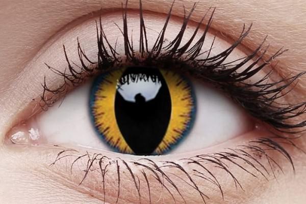 Wolfmoon (Jahreslinse)